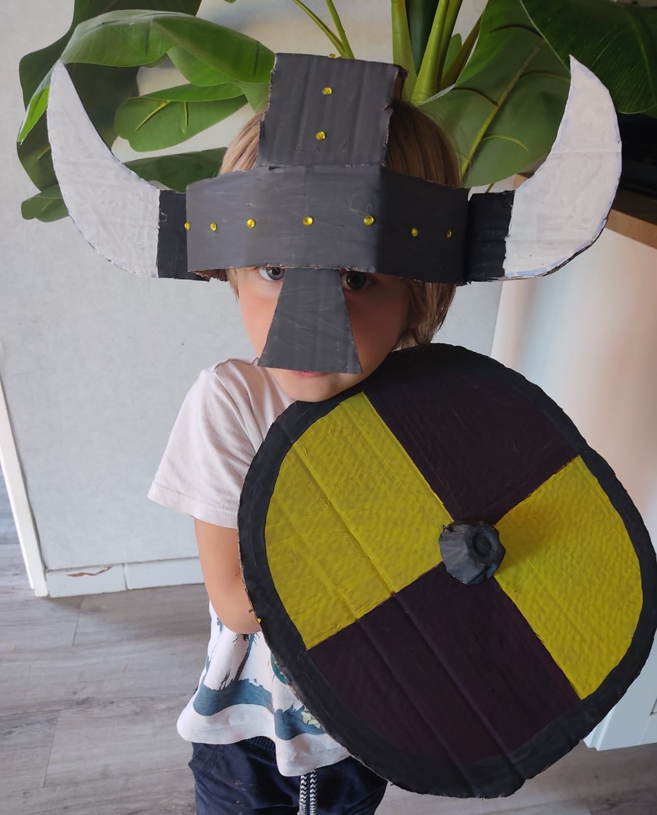 Casque et bouclier Viking